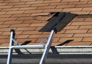 5 Common Roof Problems