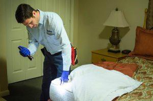 Professional Bedbug Extermination: Enjoying a Better Quality of Life
