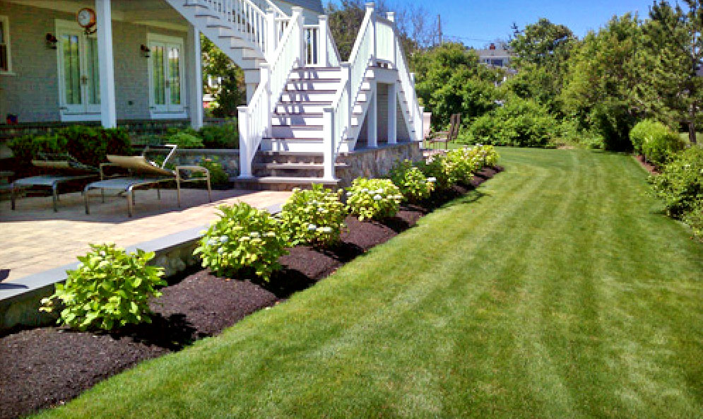 Landscaping Services: how to choose best one?